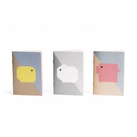 Trio carnets collection BB Papier Merveille