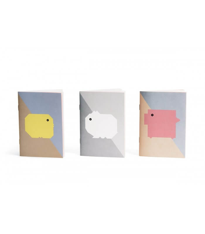 Trio carnets collection BB Papier Merveille